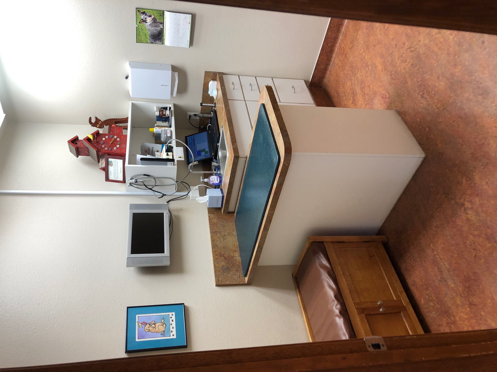 Small dog exam room